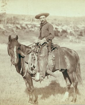 Cowboycrop
