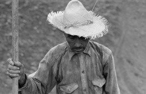 Image of campesino