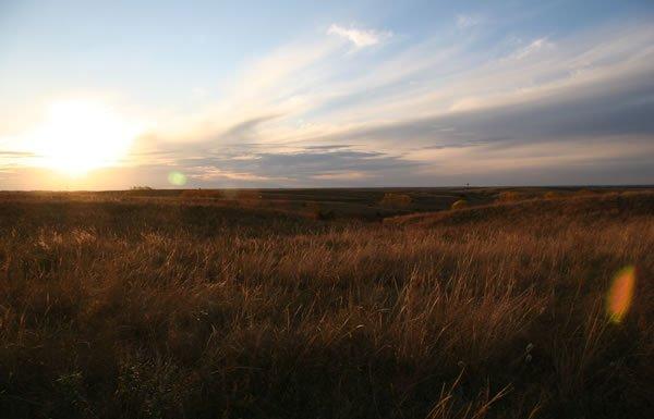 Image of prairie