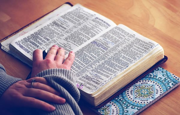 Image of person reading the Bible