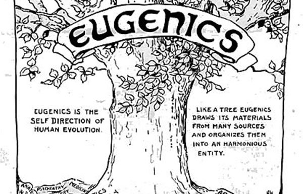 "Image of drawing of ""Eugenics Tree"""