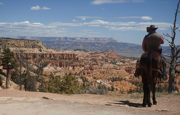 Man on horse beside edge of Grand Canyon