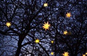 Paper stars glowing yellow in dark tree at night