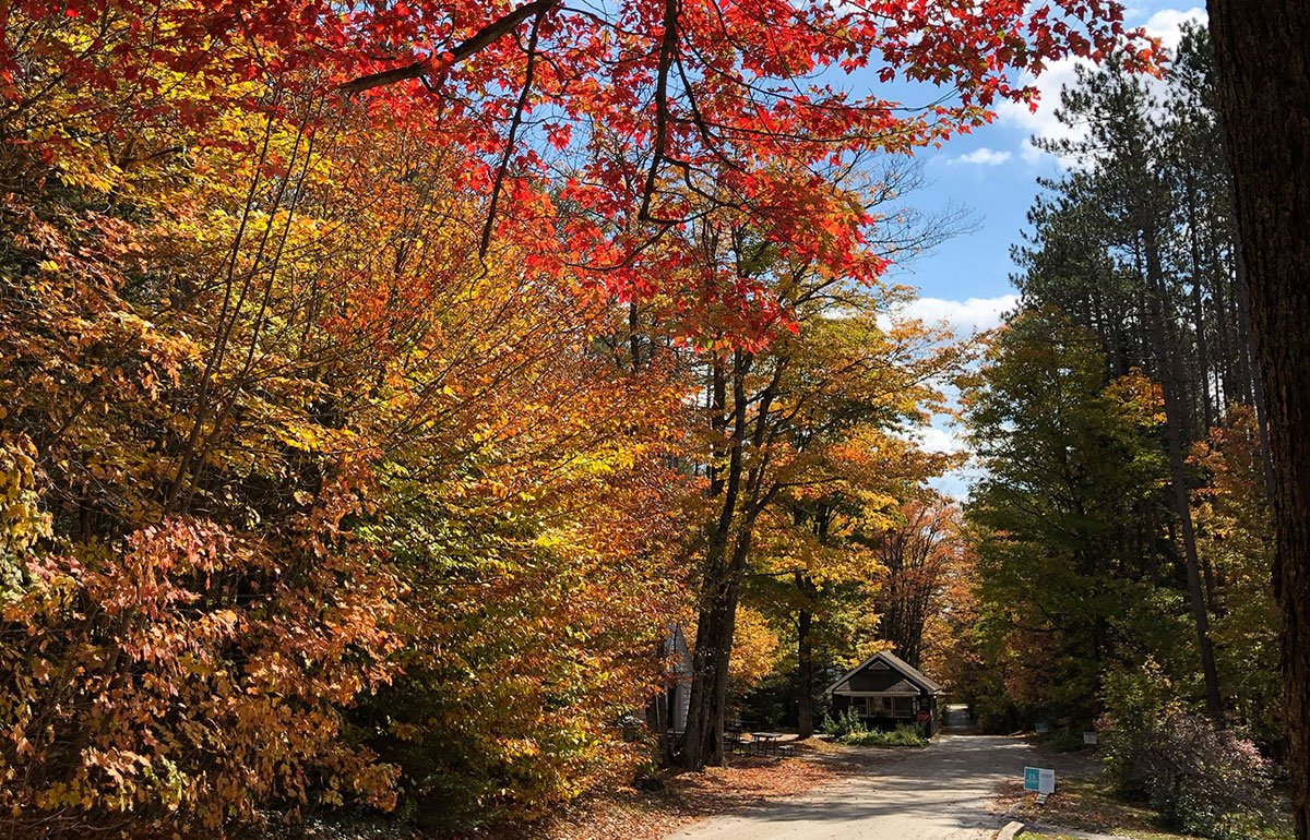 Colorful Vermont foliage